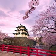 Oferta primavera en Japón 2014