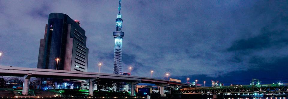 Japón desde las alturas; el Skytree de Tokio.