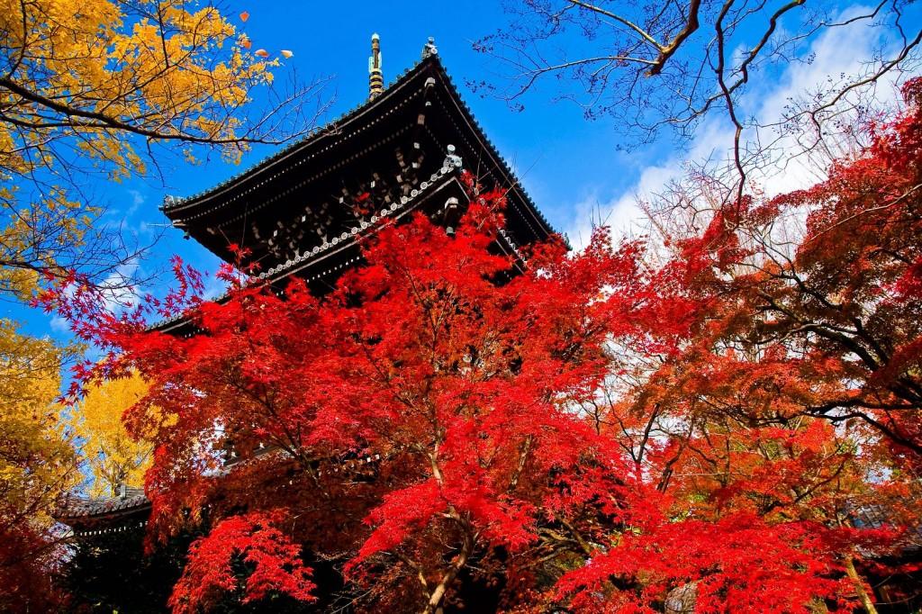 Colores otoñales en Kioto