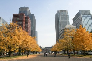 Tokio en otoño