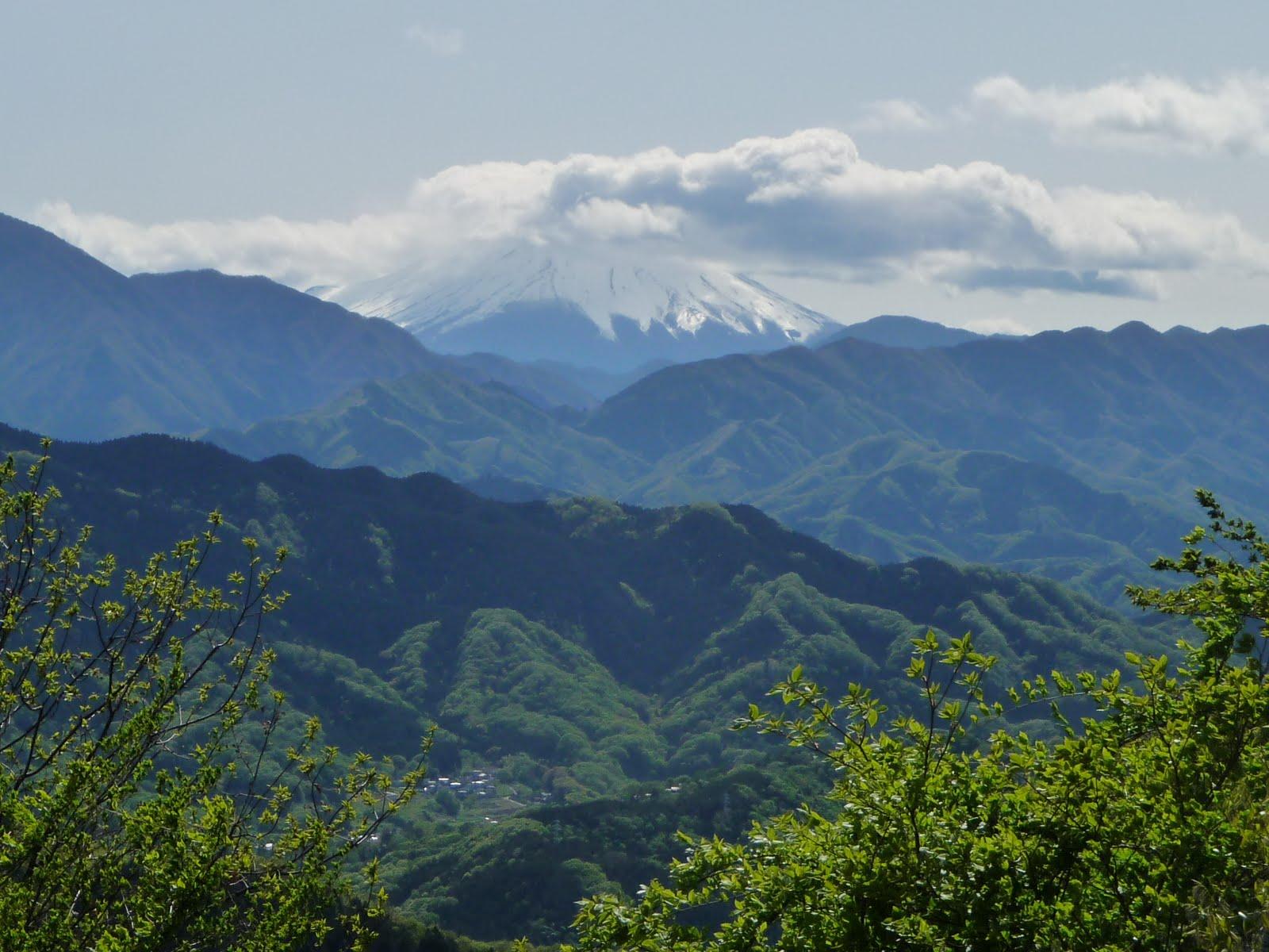 Vista de el Monte Fuji desde el Monte Takao