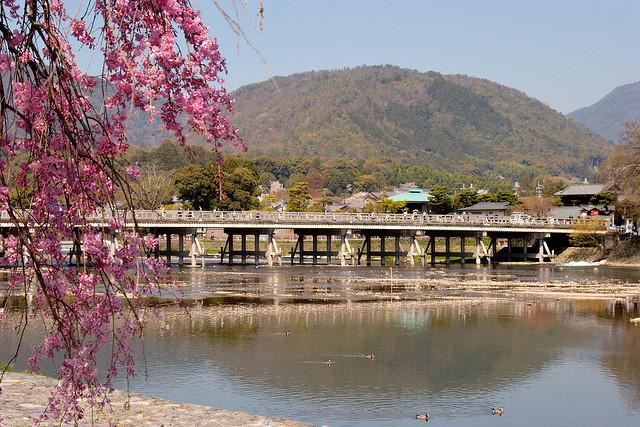 Imagen durante el día del puente de la luna o puente de Togetsukyo